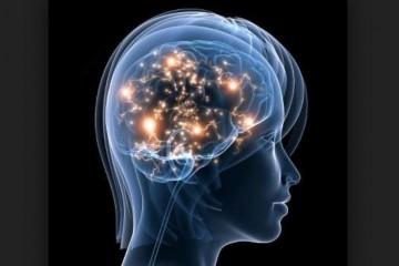 Беременность меняет структуру мозга