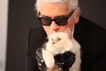 Парижский автосалон: Маккартни, Лагерфельд и кошка Шупетт