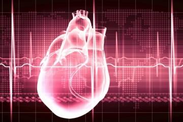 Обнаружено 10 неизвестных генетических факторов, связанных с работой сердца