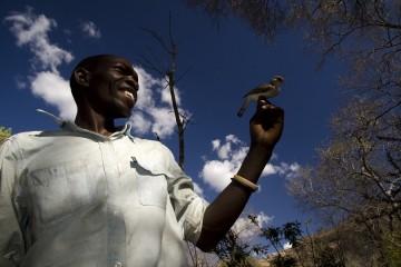 Африканцы стали говорить с птицами на их языке