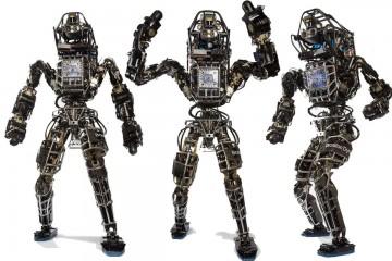 В РФ раскрыт сговор корпоративных роботов на тендерах госзакупок