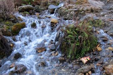 Национальный парк Сочи возвращает экологически сознательным деньги за билет