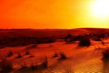Жарка во фритюре спасает от глобального потепления
