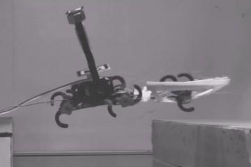 Роботы учатся у тараканов