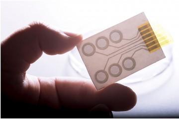 Сенсоры-стикеры для измерения функций тела