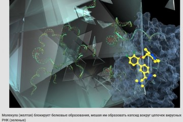 Ученые заявили о создании универсального лекарства от простуды