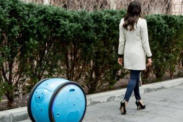 В Италии создан робот-чемодан
