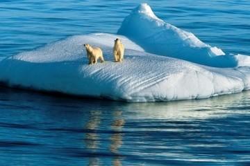 Ледники планеты тают в 3 раза быстрее, чем 5 лет назад