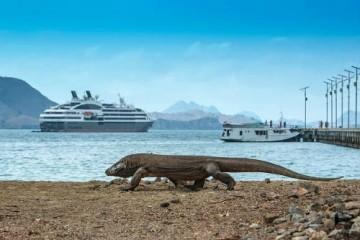Скоро туристам запретят ездить на остров Комодо