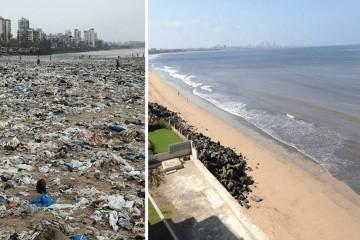 Цена вывоза мусора в различных местах РФ стала отличаться почти в 70 раз