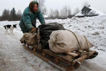 Более 20% жителей 20 регионов России перешли за черту бедности