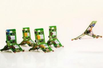 Сила роя мини-роботов в коллективном интеллекте