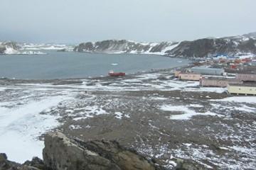 Следующий год в России назван Годом тающей Антарктиды