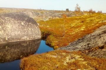 После взрыва под Северодвинском карельская растительность истлела без огня