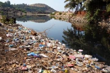 Одноразовый пластик составил почти 100% прибрежного мусора в РФ