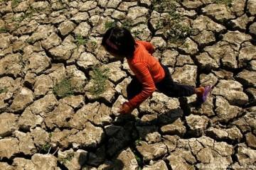 11 тысяч учёных предрекли всем ужасные страдания из-за глобального потепления