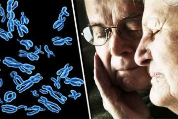 Новый ген риска возникновения болезни Альцгеймера