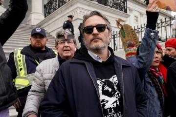 Хоакина Феникса и Мартина Шина арестовали за участие в акции протеста