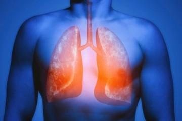 Легкие бросивших курить исцеляются от канцерогенных мутаций
