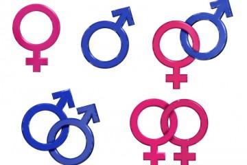 Преимущество эволюции однополой сексуальности?